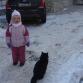 Еще один местный кот