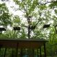 """Веревочный парк """"Тарзания"""" в Загородном парке"""