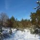 Окрестности Лесной Жемчужины