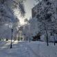 Наш райончик зимой